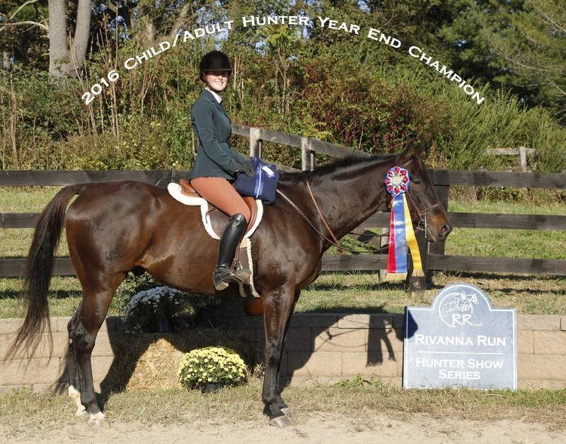 2016 Ch adult hunter champ