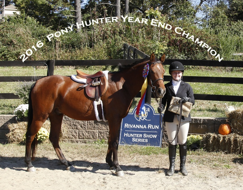 2016 Pony Hunter Champ