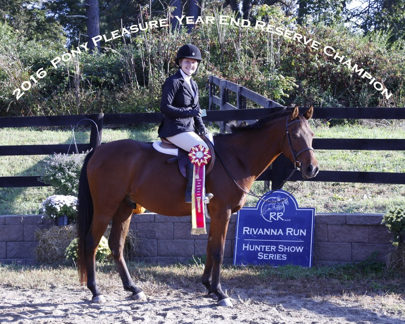 2016 Pony Pleasure Reserved Champion