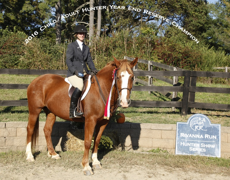 2016 Ch adult hunter res champ